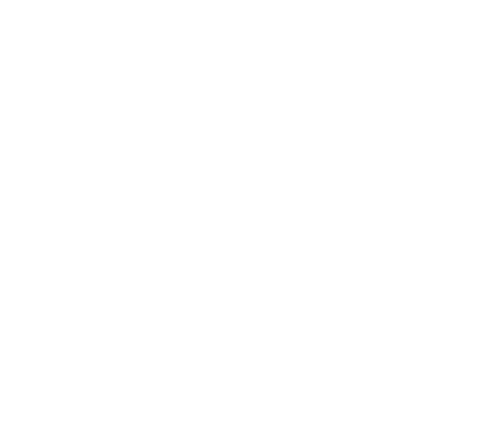 Sylacauga Housing Authority Logo